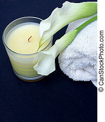 Tranquil Spa Candle - Tranquility in bathroom with spa...