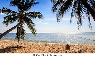 Tranquil Wave Surf of Azure Sea Wind Shakes Palm Branch