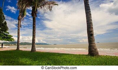 Tranquil Wave Surf on Sand Sea Beach through Palm Trunks