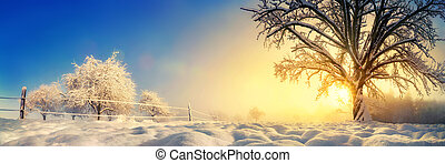 Tranquil winter landscape in the morning
