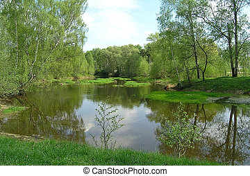 Tranquillity on the small river in Russia countryside