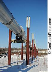trans-alaska oil pipeline along dalton highway in winter