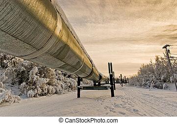 Trans-Alaska Oil Pipeline - The Trans-Alaska oil pipeline in...