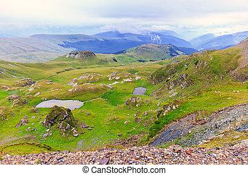 transalpina, parang, montañas, rumania