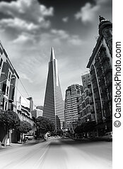 Transamerica Pyramid - Monochrome cityscape photo featuring...