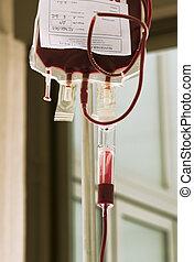 transfusión, sangre