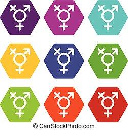 Transgender sign icon set color hexahedron - Transgender...