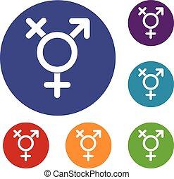 Transgender sign icons set in flat circle reb, blue and...