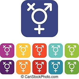Transgender sign icons set vector illustration in flat style...