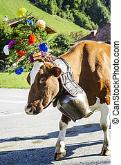 transhumance event in Charmey