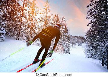 transnational, suède, ski