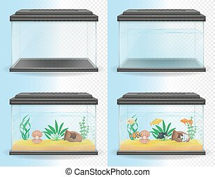 transparent aquarium vector illustration