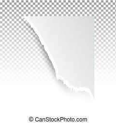 transparent, holes., riv, lagen, print., avis, væv, baggrund, hul