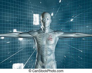 Transparent human medical representation standing over...