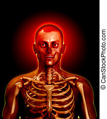 Transparent Man - X rayed man with bones and flesh visible.