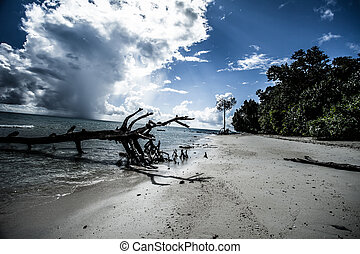 Transparent sea water and blue sky with clouds ( HDR image )