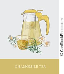 Transparent teapot with strainer or jug with filter, cup of infused tea and chamomile flowers hand drawn in elegant vintage style. Delicious herbal drink. Colorful vector illustration for label, tag.