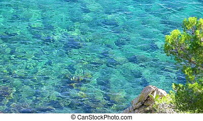 Transparent water from Coasta Brava in Spain
