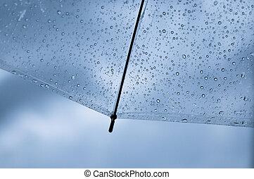 transparente, paraguas, con, gota de agua