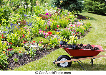 Transplanting new spring plants into the garden with a wheelbarrow full of manure and celosia seedlings standing on a neat lawn alongside a newly planted colorful flowerbed