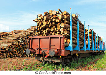 Transporting Wood by Train - Rail cars full of wooden logs...