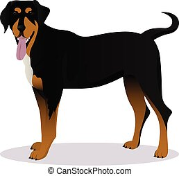 Transylvanian hound cartoon dog