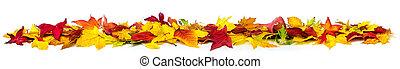 transzparens, színes, zöld, fehér, ősz