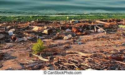 Trash on shore symbolizing environmental pollution - Large...