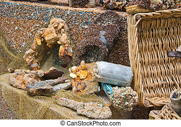 trash overgrown with sea shells