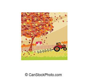 trator, campo, arar, outono