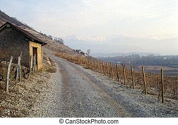 trator, celeiro, através, estrada, vinhedos, savoy