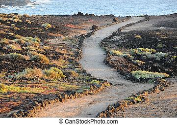 Pathway in the Volcanic Desert