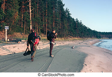 Travel On The Coast Along Coniferous Forest