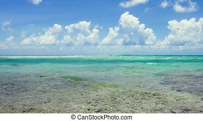 lagoon at tropical beach in french polynesia
