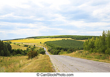 Travel through the endless expanses of summer in warm weather. The road among the hills, sunflower fields, forests and meadows against the blue sky on a sunny day