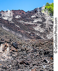 view of hardened lava flow on slope of Etna