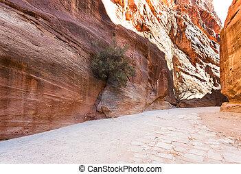 Al Siq passage to ancient Petra town in winter