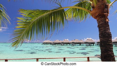 Travel vacation paradise video background with overwater bungalows in sea water