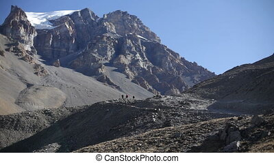 traveler., βουνήσιοσ. , nepal.