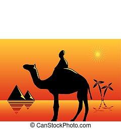 Traveler in the desert