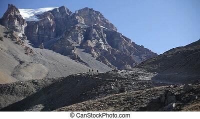 traveler., nepal., montagnes.