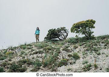 Traveler walking with trekking poles