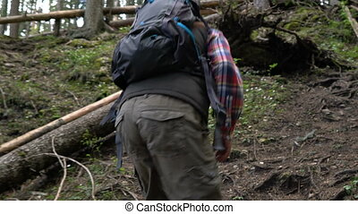 Traveler with a backpack walks through the forest - Bearded...