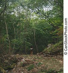 Traveler woman walking in summer forest