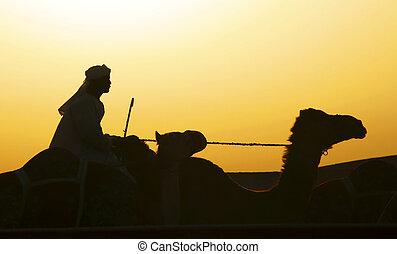 Traveling at Dusk - A Arab riding a camel at dusk