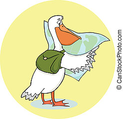 traveling pelican - pelican with a backpack and a map