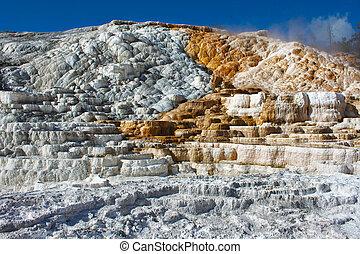 Travertine terrace, Mammoth Hot Springs, Yellowsto