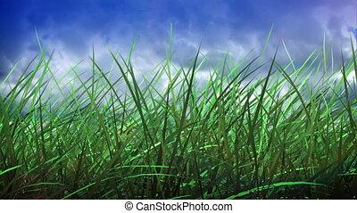 trawa, i, niebo, upływ czasu