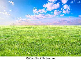 trawa, i, niebo