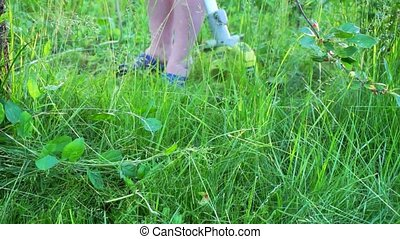 trawa, kośba